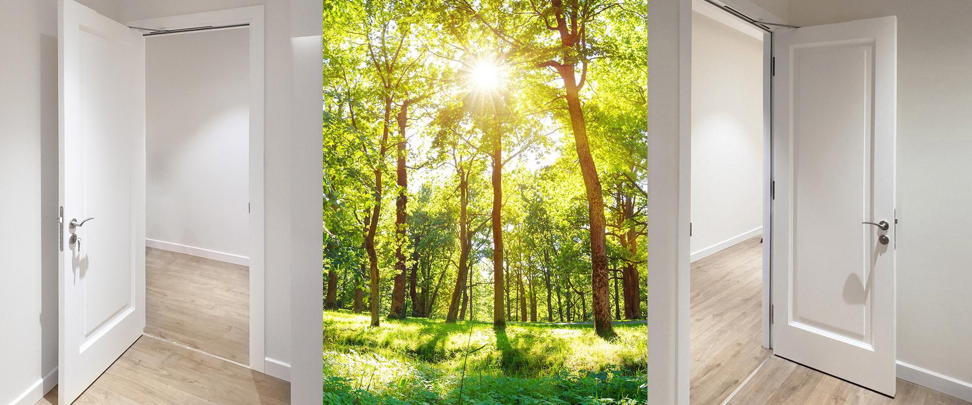 Bespoke Wooden Door
